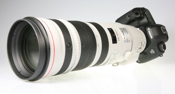 Canon EF 200-400 mm f/4 IS USM 1,4x