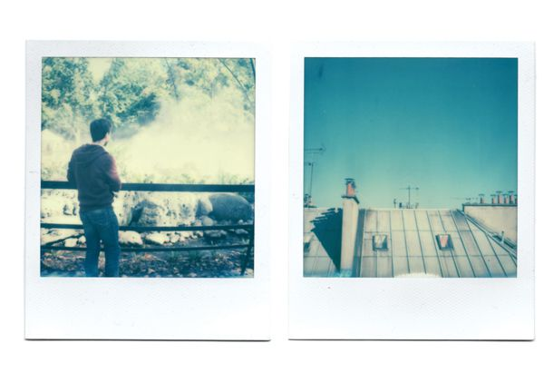 Test, Impossible Project, Color Film for SX-70