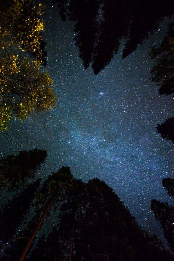 Photographier un ciel toil exercices photo focus num rique - Image ciel etoile ...