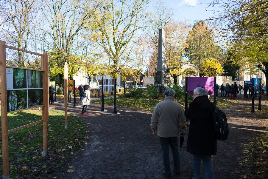 Festival photo montier en der 2016 / monument aux morts