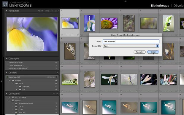 Tutoriel vidéo Lightroom 3 collection