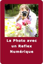 home_bouton_reflex copie