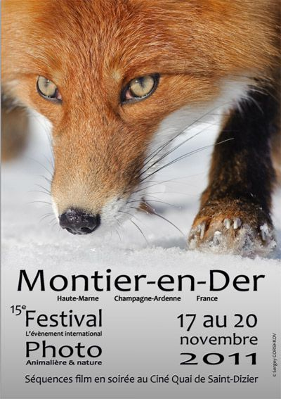 Festival photo animalière et nature Montier en Der