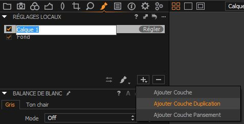 Capture One Pro 8, capture d'écran, calque de réparation
