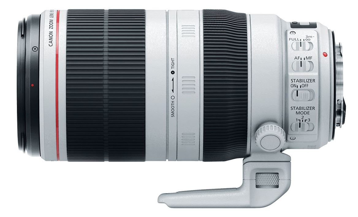 Zoom Canon EF 100-400mm 1:4,5-5,6L IS II USM