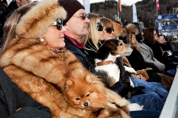 Martin Parr / Snow Polo World Cup