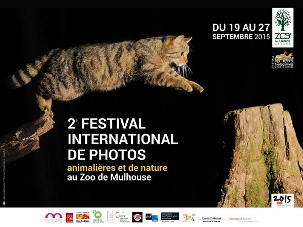 Festival international rhénan de photos animalières de Mulhouse