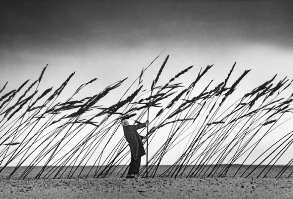crédit photo : Gilbert Garcin