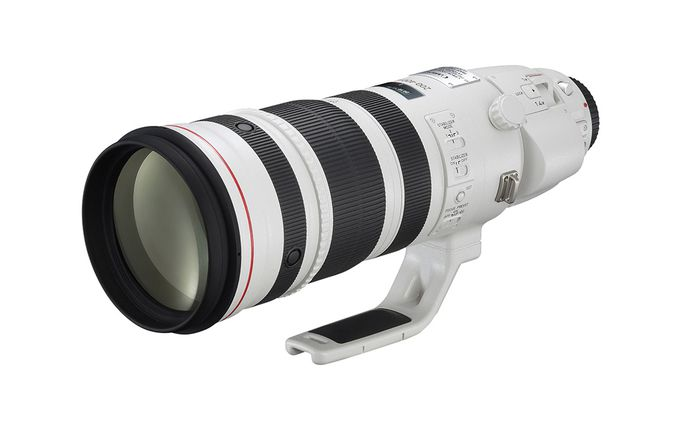 EF 200-400 mm f/4 IS USM 1,4x