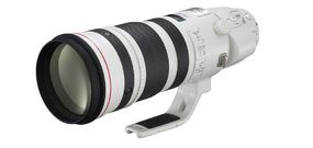 Canon EF 200-400 mm f/4 L IS USM 1,4x